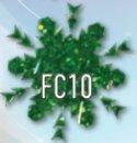FC10.jpg