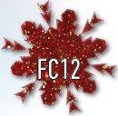 FC12.jpg