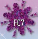 FC7.jpg