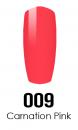 009_CARNATION_PINK.png