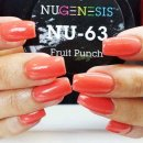 nu_63_Fruit_Punch.jpg