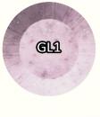 gl1.png